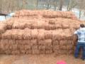 pinestaw-in-bin